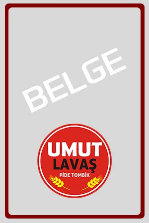 belge3