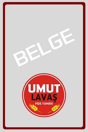 belge4